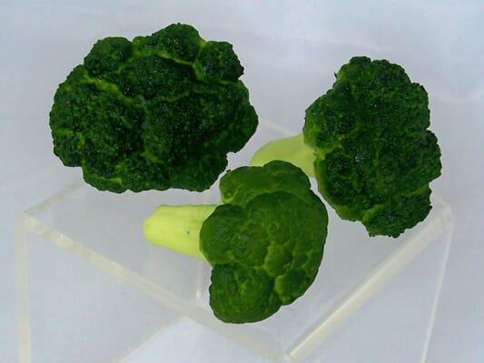 Fake Broccoli Florets (Set of 3)