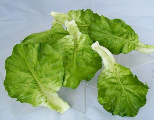 Loose Artificial Lettuce Leaves